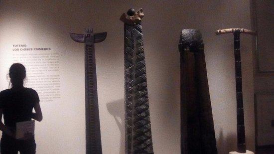 Museo de arte Tigre: fotos