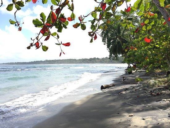 Province of Limon, Costa Rica: photo3.jpg