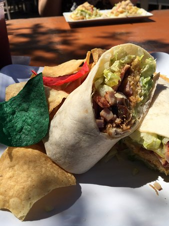 Ficus Mexican Bar & Grill: Cuban Wrap with fresh chips