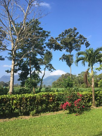 Eco Arenal Hotel: View of Volcán Arenal from the hotel