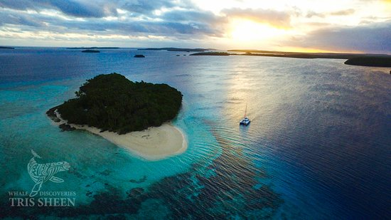 Ha'apai Islands, Tonga: S.Y. Wildlife anchored up for the night, stunning island paradise.