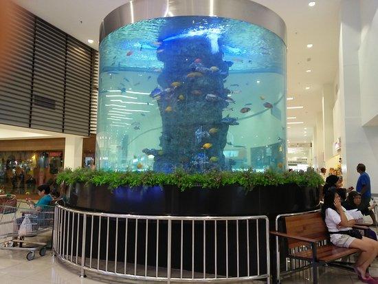 Giant Plentong Mall Johor Bahru Malaysia Review