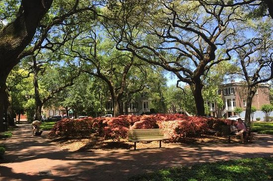 Stroll with a Local through Savannah's Historic District