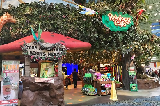 Rainforest Cafe Menu Katy Tx