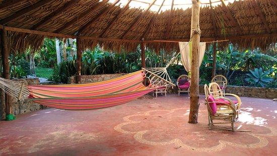 La Casa Rosa Hotel: hammock and seating area