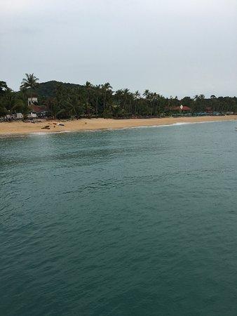 Coco Palm Beach Resort: Blick auf Beach