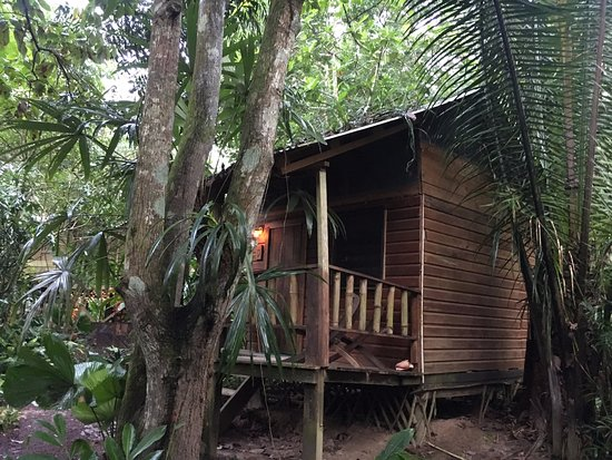 Amazing Hideaway Near the River