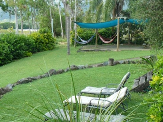 Backpackers by the Bay: the hammock area