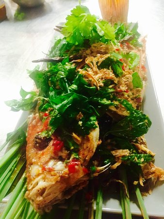 Edge Hill, Αυστραλία: Samgasat Thai Cuisine by Tom