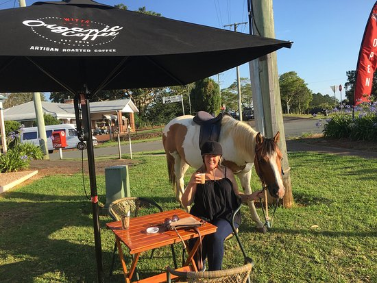 Maudy S Great Organic Coffee Amazing View Either Car Or Horse Life Is Good