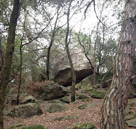 Ruta prehistorica la Roca del Valles