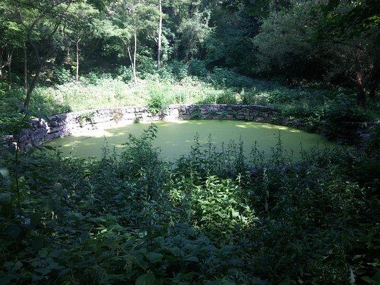 Villa Opicina, Italy: La cisterna