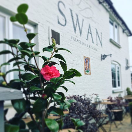 Hanley Swan, UK: spring is coming 