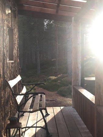 Lazy Duck Hostel, Eco Cabins & Lightweight Camping Ground: photo2.jpg
