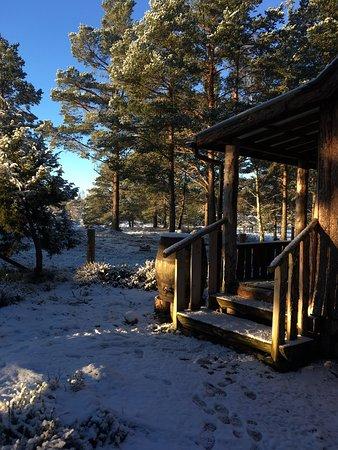 Lazy Duck Hostel, Eco Cabins & Lightweight Camping Ground: photo3.jpg