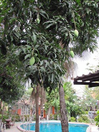 Foto de Deeden Pattaya Resort