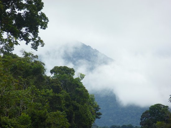 Iwokrama Canopy Walkway: View of mountain from dirt road outside lodge