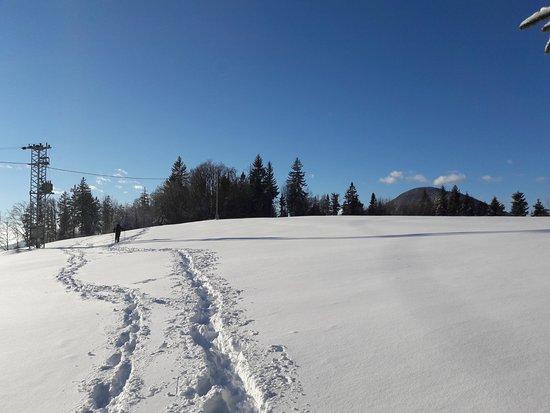 Petrovce, Slovenia: Hiking; Liboje to Smohor (winter)