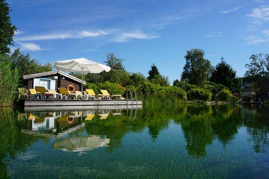 Jammertal Resort: Schwimmteich