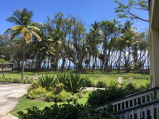 Rosalie Bay Resort: photo1.jpg