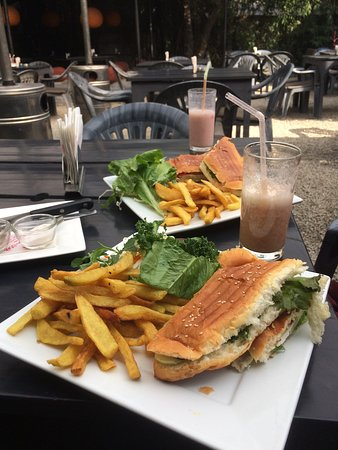 Funky Buddha Kathmandu : A great treat. The halloumi  cheese grilled sandwich with a Funky Buddha special shake. A must t