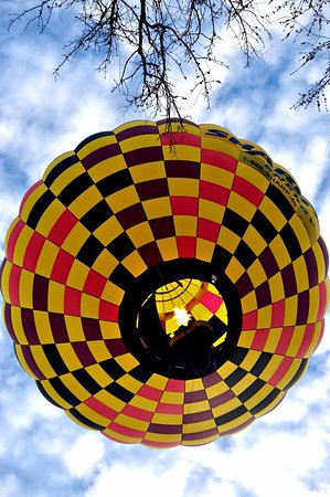 Chester, MD: The Yellow Jacket Balloon
