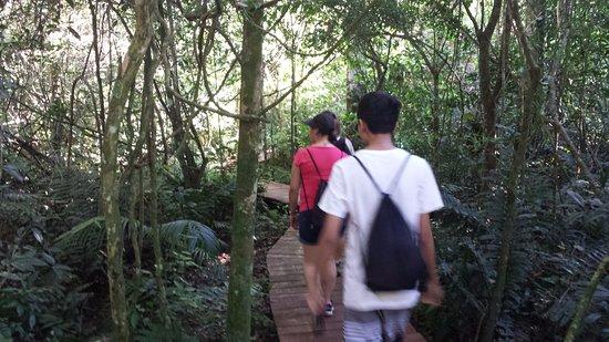 Poco Preto trail: Inicio da trilha