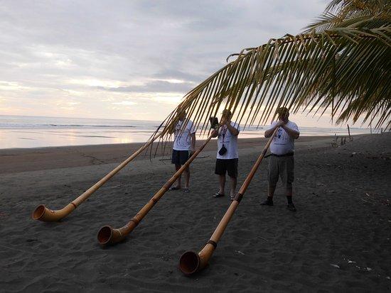 Playa Matapalo Görüntüsü
