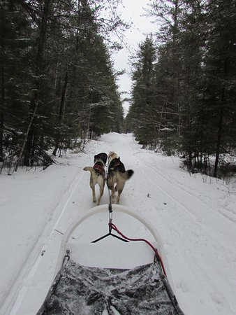 Ely, MN: Traveling along one of the quiet trails