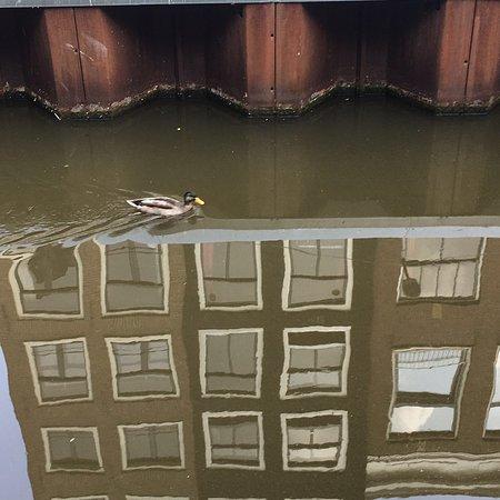 Hotel d'Amsterdam: IMG-20160723-WA0019_large.jpg