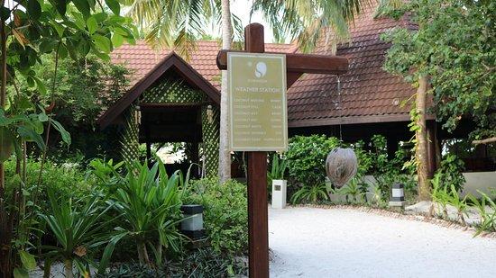 Robinson Club Maldives: Wetterstation vorm Restaurant