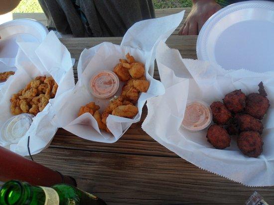 Hernando Beach, FL: Clams, Grouper bites, Conch