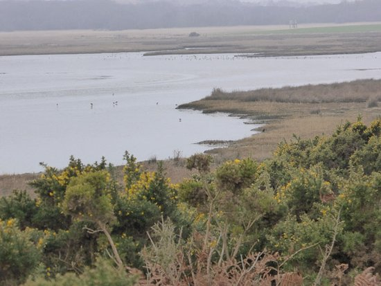 View of estuary at Arne