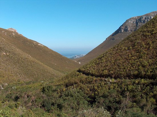 Fernkloof Nature Reserve : Hermanus in Back ground
