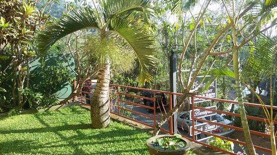 Zdjęcie Nature Walk Resort