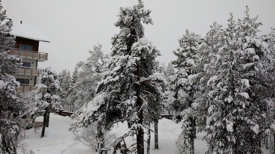 Lapland Hotel Riekonlinna: This is not black and white photography. Just wall to wall snow !