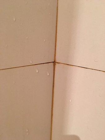 Chambre très sale, miroir cassé, salle de bain en très mauvaise état ...