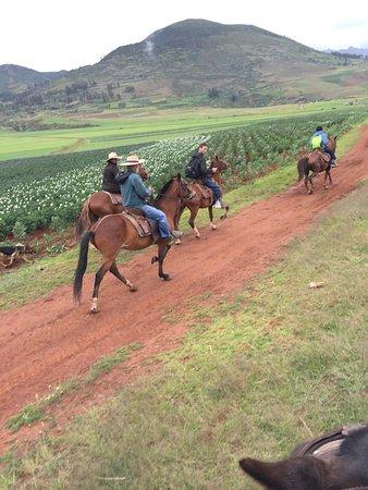 Apupacha Horse Adventure: photo2.jpg