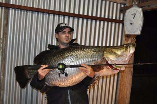 Yungaburra, Australien: Mark Hope, IGFA World Record Barramundi, 4kg Line class, 40.7kg