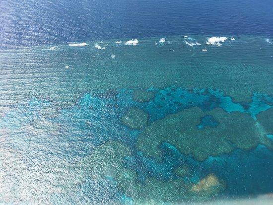 Cruise Whitsundays : photo1.jpg