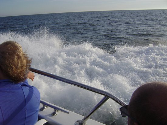 Destin's Original Sea Blaster: Loved the speed!