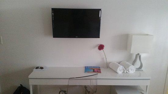 Greenview Hotel : TV