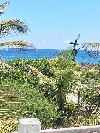 Isola di Grand'Abaco: photo1.jpg