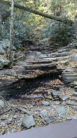 Trough Creek State Park: Typically there more to see but the fall was somewhat dry during this October visit.