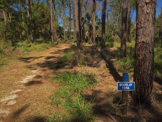 Leesburg, FL: Bourlay Trail