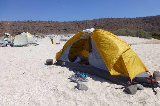 Baja Outdoor Activities (BOA): single or double tents