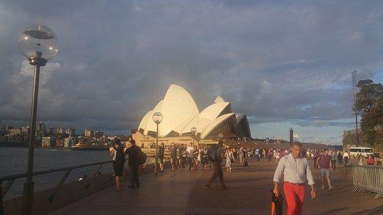 The Opera House to the Botanic Gardens Walk: Sydney opera from Circular Quay side
