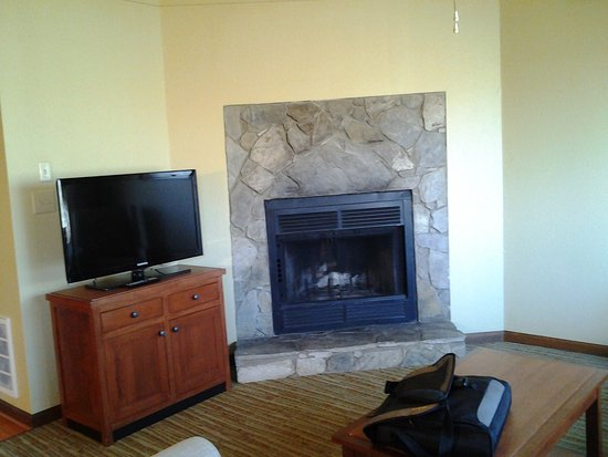 Lake Lure, NC: fireplace in 1 bedroom deluxe