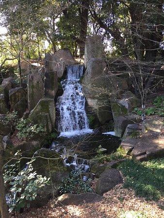 Tokugawa Garden: 高台に滝があります