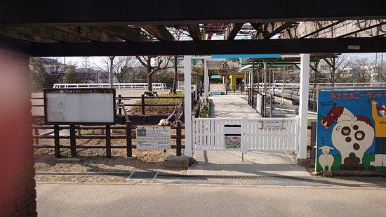 Nagisa Pony Land